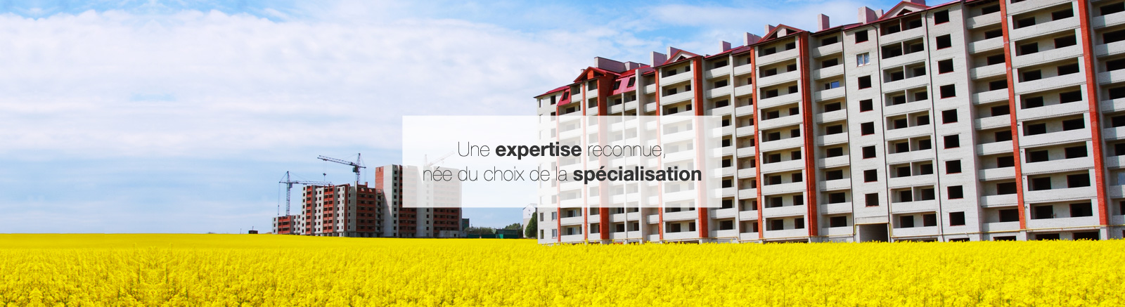 Une expertise reconue, Enjea